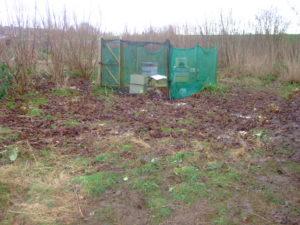 FOSP & SAGA 8 cleared site